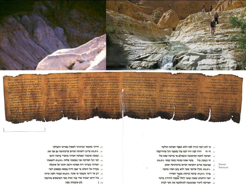 Bibelfacts Was beweist, dass die Bibel nicht verändert wurde