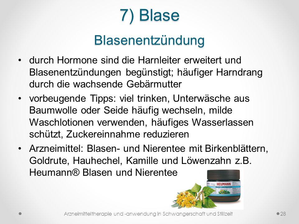 7) Blase Blasenentzündung