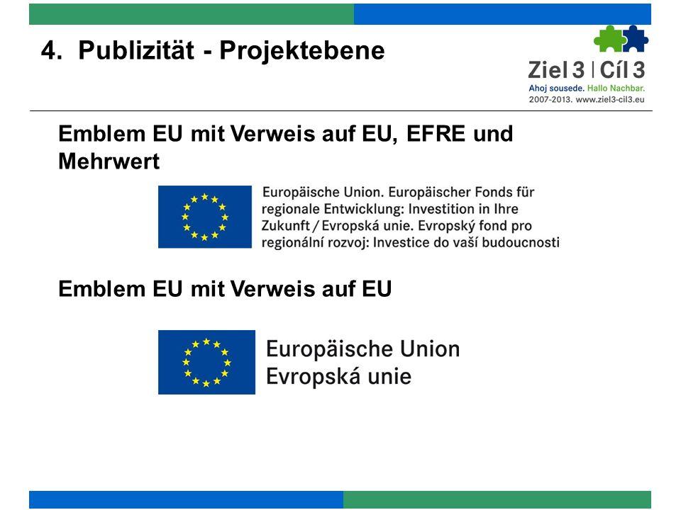 4. Publizität - Projektebene