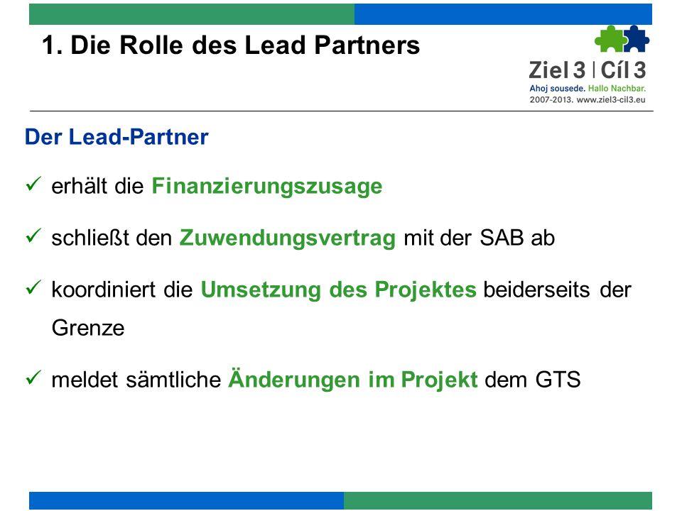 1. Die Rolle des Lead Partners
