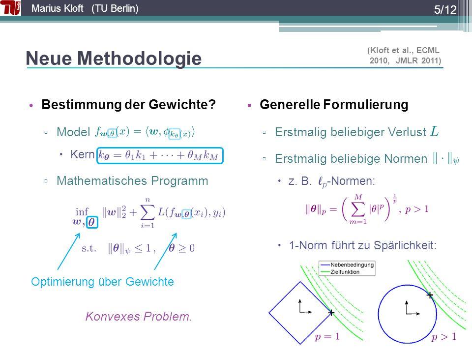 Neue Methodologie Bestimmung der Gewichte Generelle Formulierung