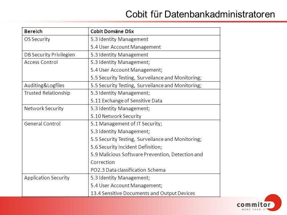 Cobit für Datenbankadministratoren