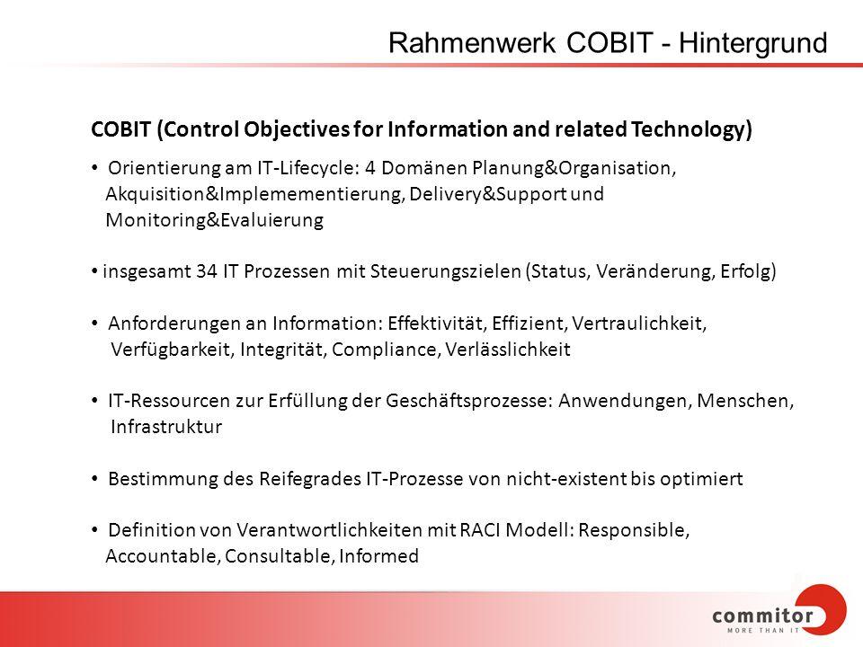 Rahmenwerk COBIT - Hintergrund