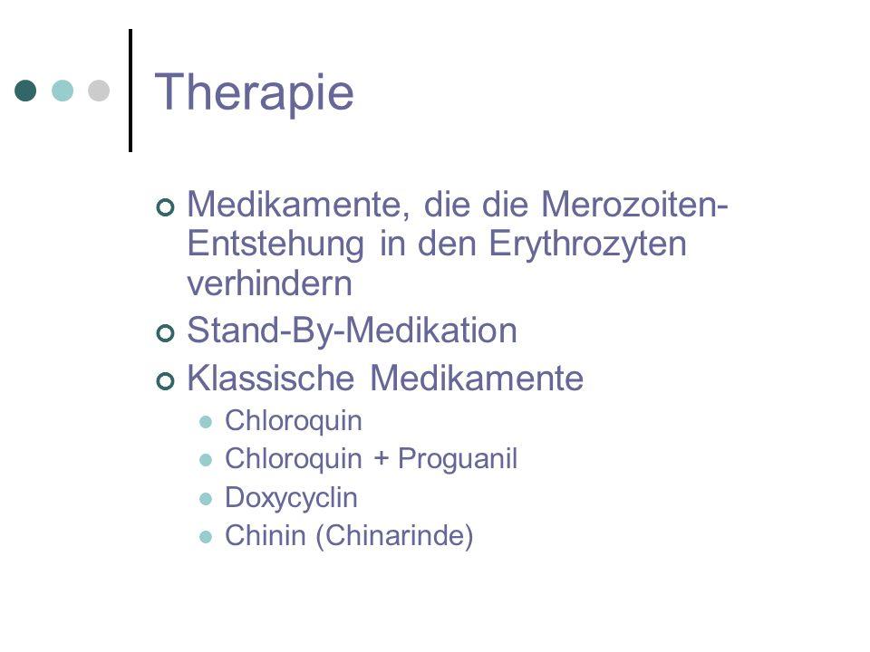 Therapie Medikamente, die die Merozoiten-Entstehung in den Erythrozyten verhindern. Stand-By-Medikation.