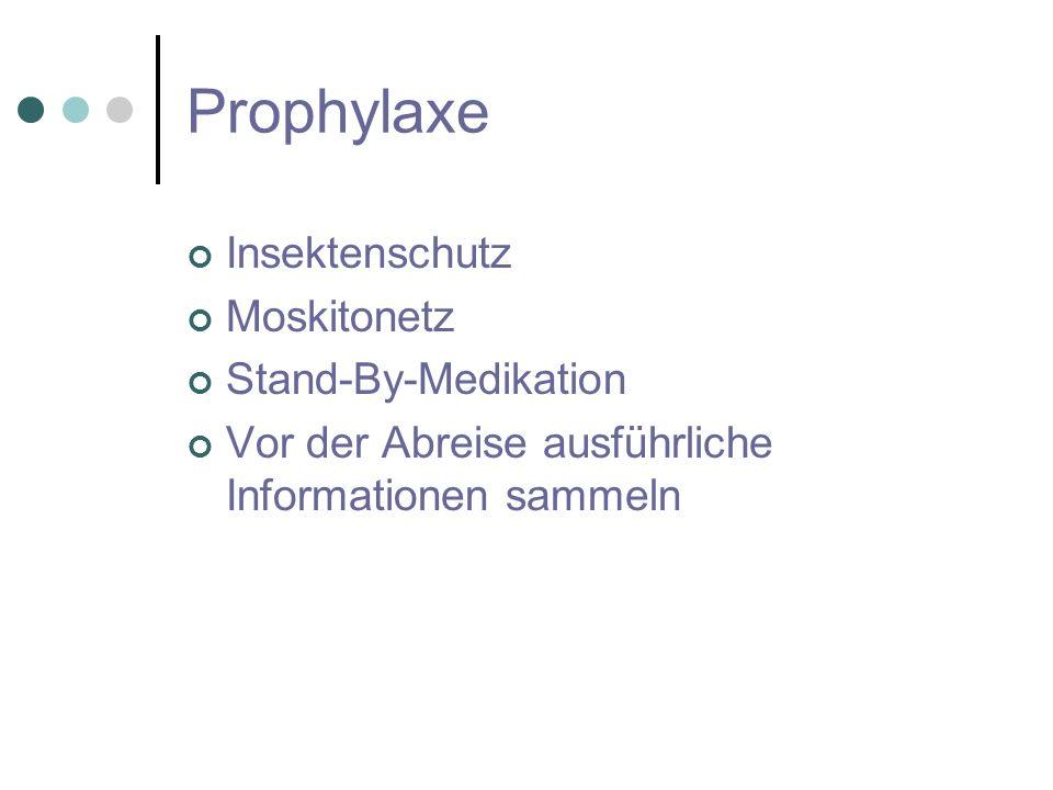 Prophylaxe Insektenschutz Moskitonetz Stand-By-Medikation