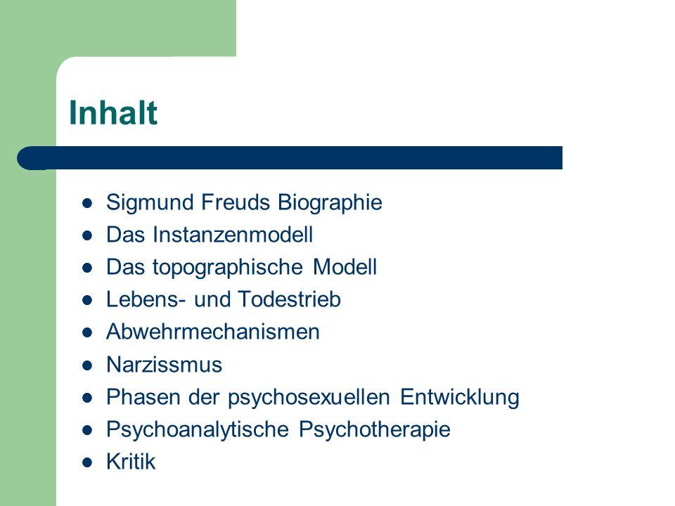Inhalt Sigmund Freuds Biographie Das Instanzenmodell