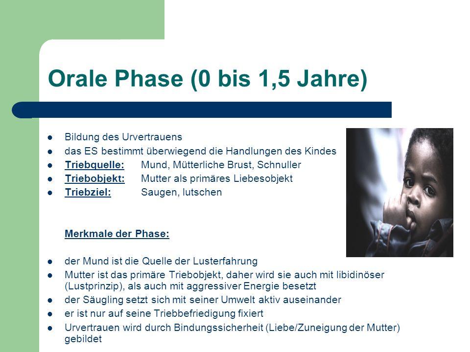 Orale Phase (0 bis 1,5 Jahre)