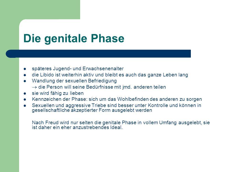 Die genitale Phase späteres Jugend- und Erwachsenenalter