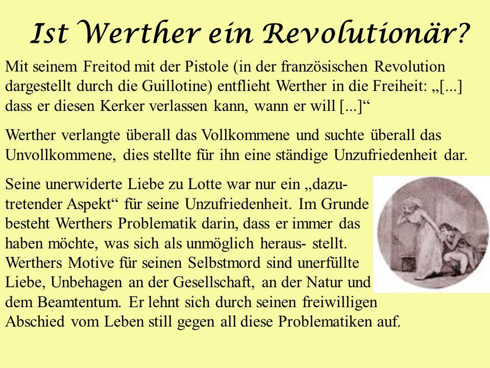 Ist Werther ein Revolutionär