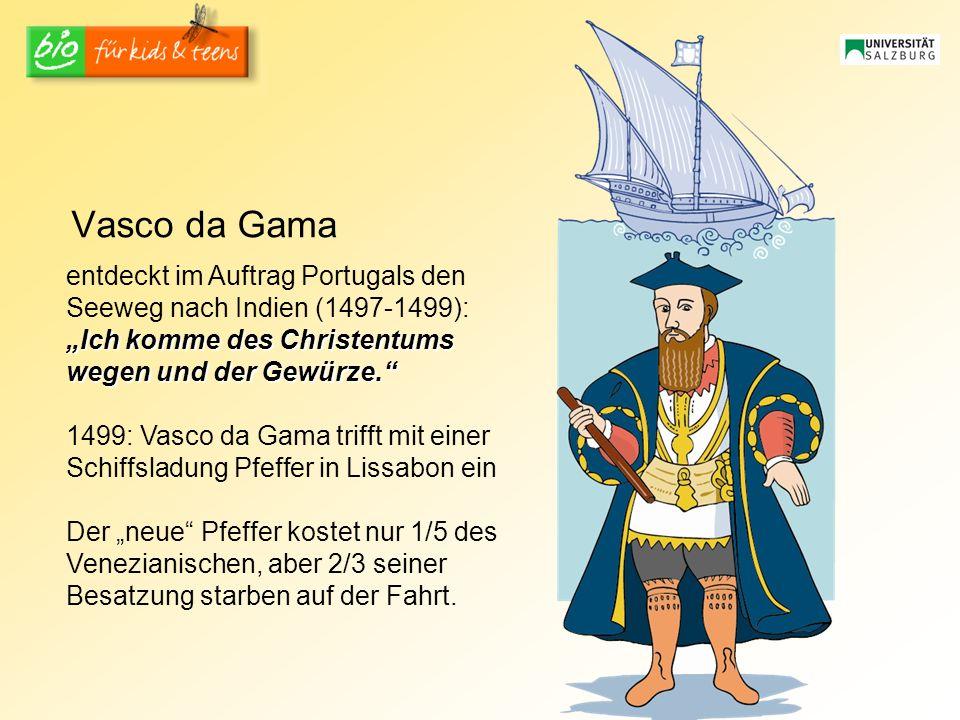 """Vasco da Gama entdeckt im Auftrag Portugals den Seeweg nach Indien (1497-1499): """"Ich komme des Christentums wegen und der Gewürze."""