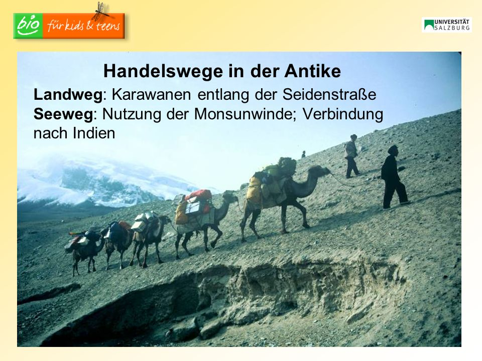 Handelswege in der Antike