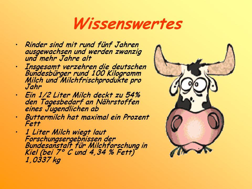 Wissenswertes Rinder sind mit rund fünf Jahren ausgewachsen und werden zwanzig und mehr Jahre alt.