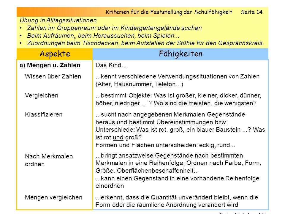 5. Elementares Wissen / fachliche Kompetenzen