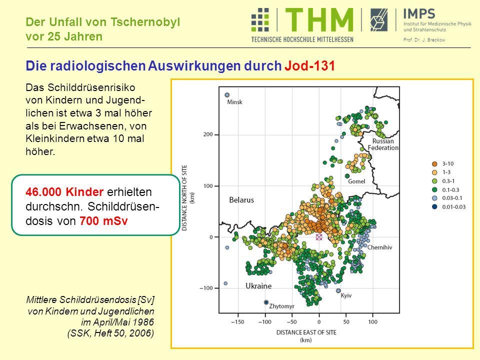 Die radiologischen Auswirkungen durch Jod-131