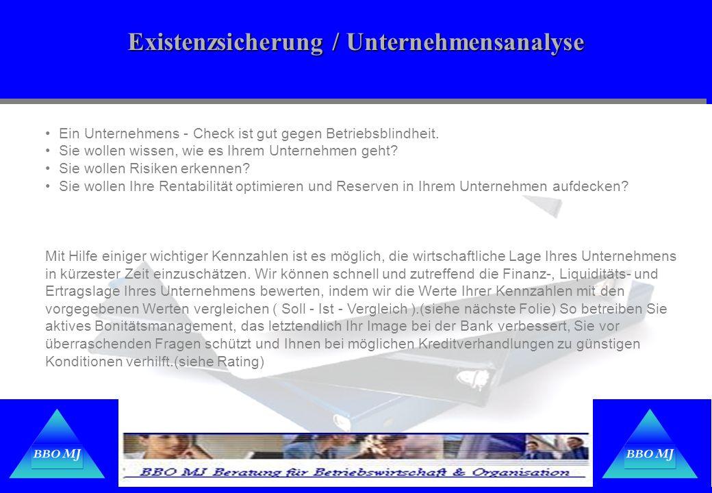 Existenzsicherung / Unternehmensanalyse