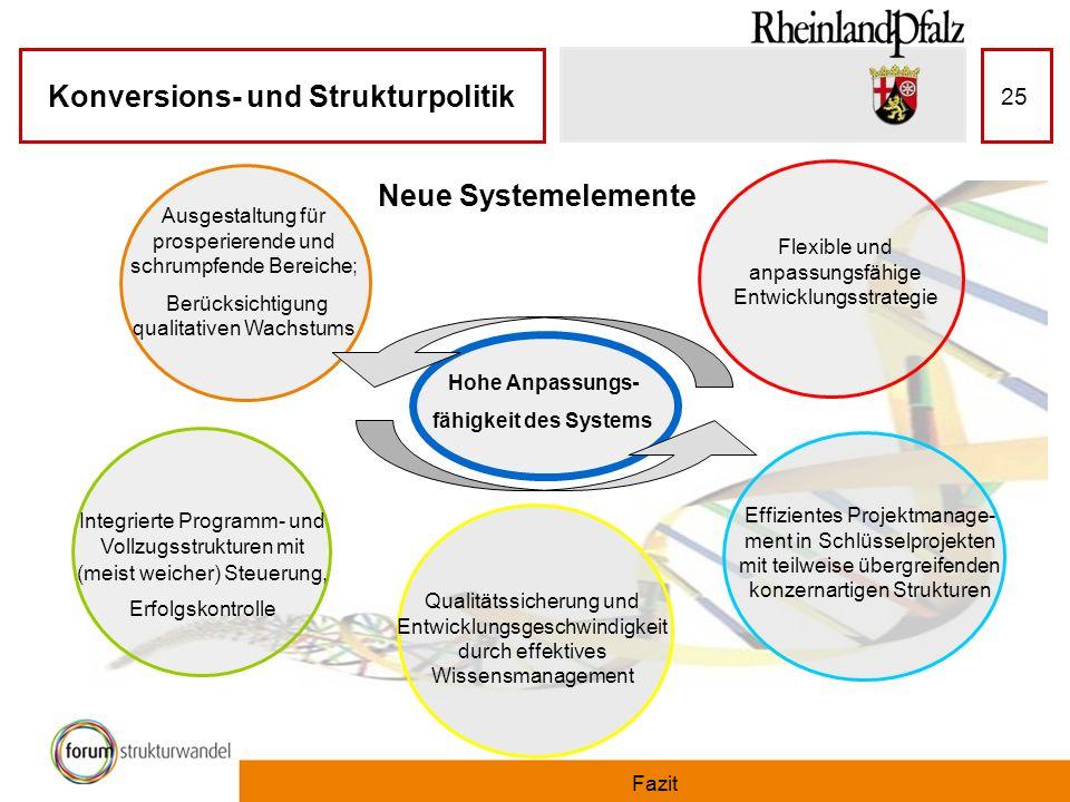 Neue Systemelemente Ausgestaltung für prosperierende und schrumpfende Bereiche; Berücksichtigung qualitativen Wachstums.