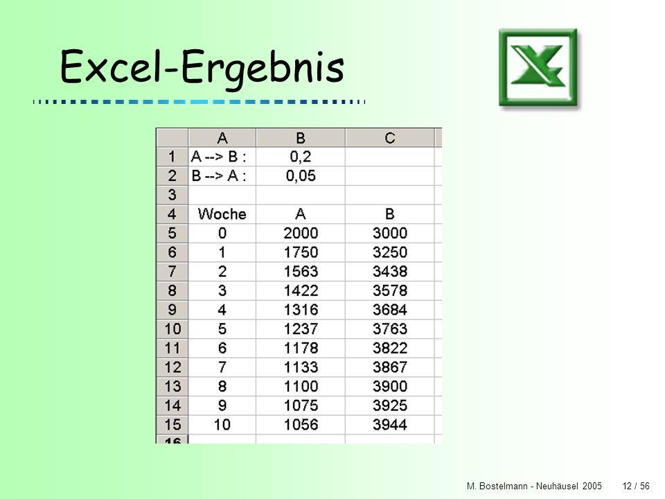 Excel-Ergebnis M. Bostelmann - Neuhäusel 2005