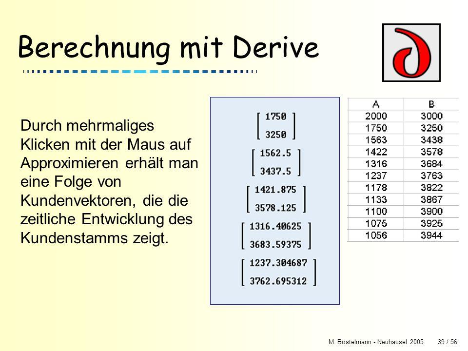 Berechnung mit Derive