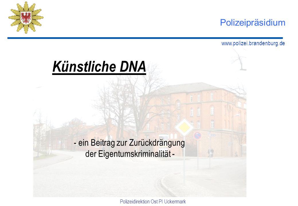 Künstliche DNA Polizeipräsidium ein Beitrag zur Zurückdrängung