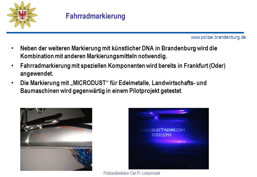 Fahrradmarkierung Neben der weiteren Markierung mit künstlicher DNA in Brandenburg wird die Kombination mit anderen Markierungsmitteln notwendig.
