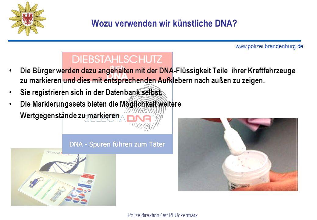 Wozu verwenden wir künstliche DNA