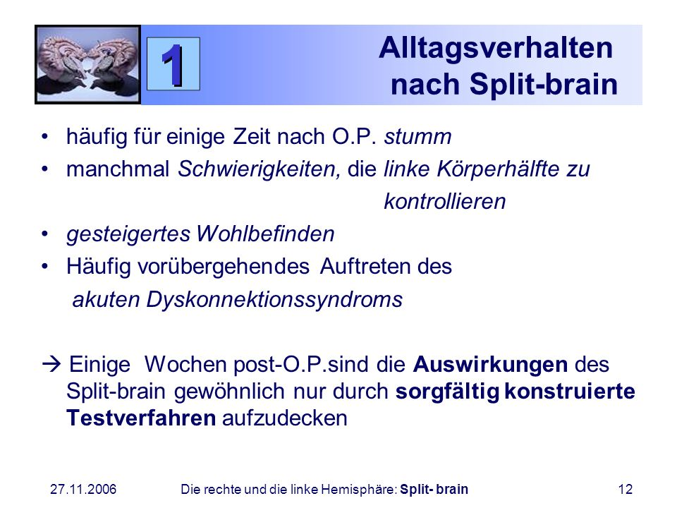 Alltagsverhalten nach Split-brain