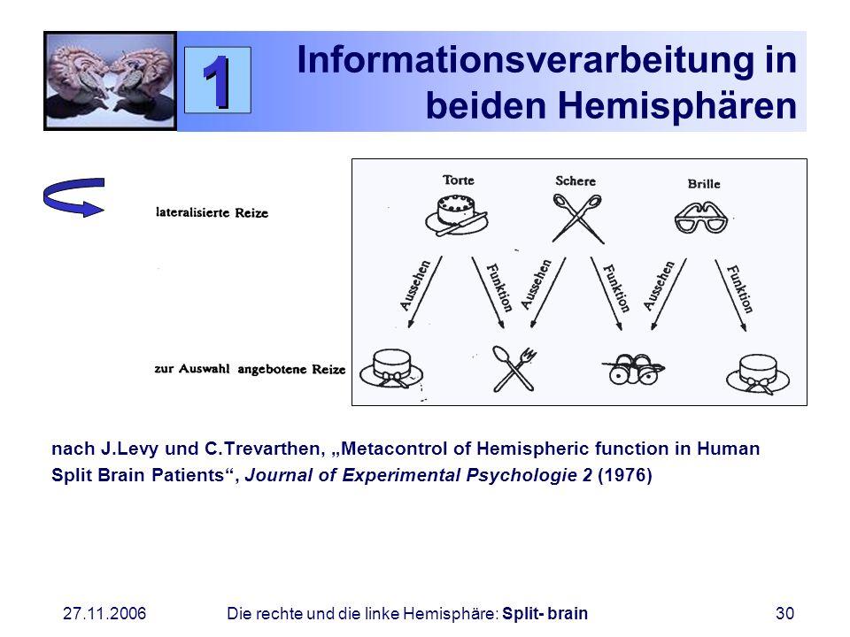 Informationsverarbeitung in beiden Hemisphären