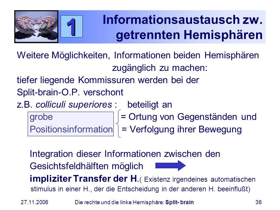 Informationsaustausch zw. getrennten Hemisphären