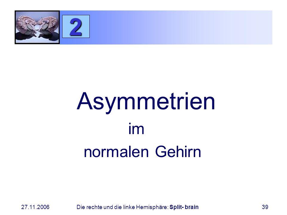 2 Asymmetrien im normalen Gehirn
