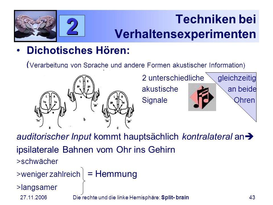 Techniken bei Verhaltensexperimenten