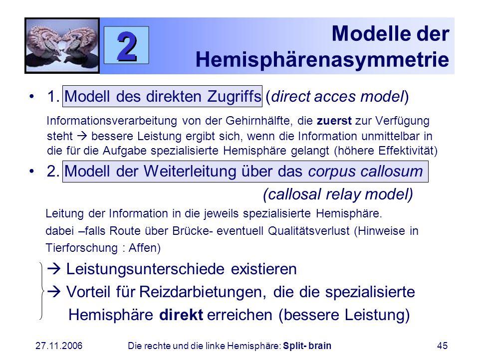 Modelle der Hemisphärenasymmetrie