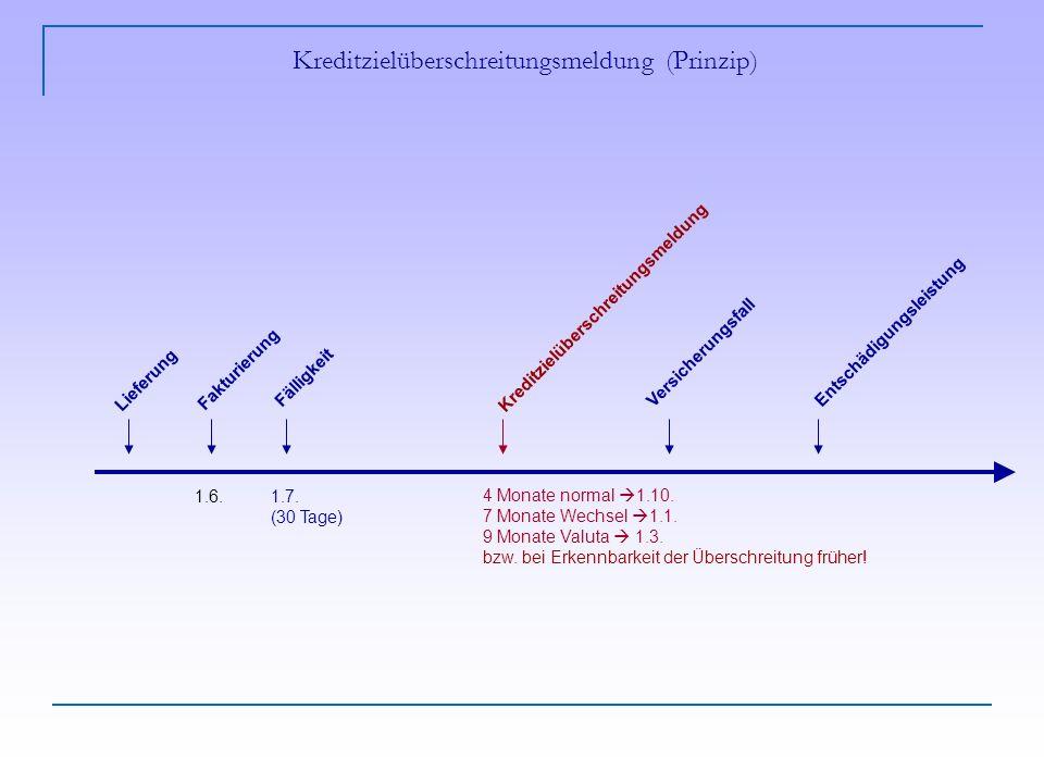 Kreditzielüberschreitungsmeldung (Prinzip)
