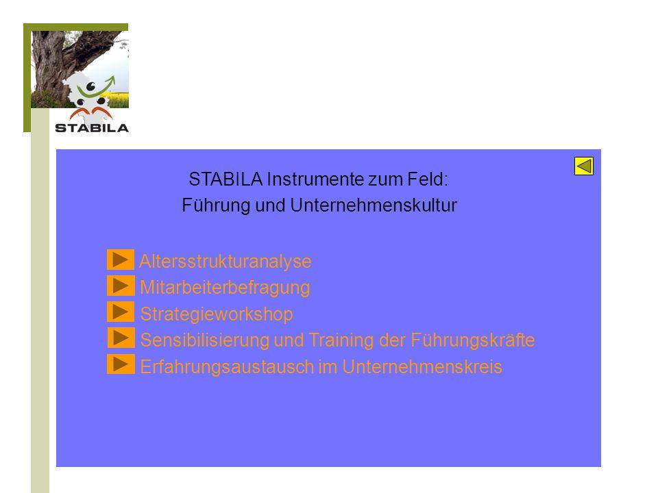 STABILA Instrumente zum Feld: Führung und Unternehmenskultur