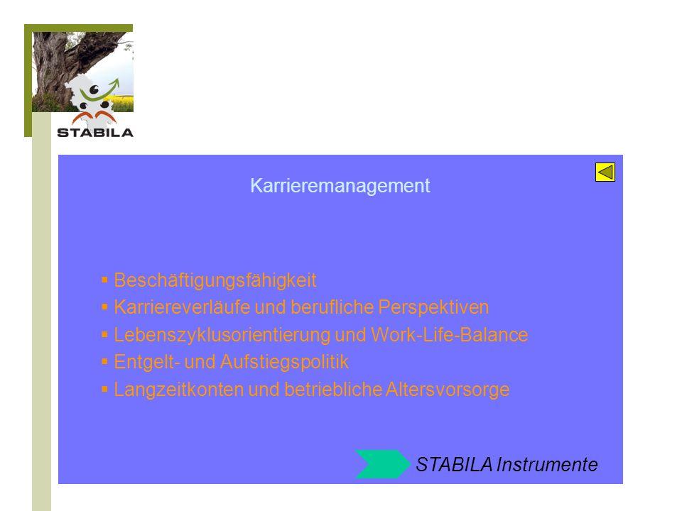 Karrieremanagement Beschäftigungsfähigkeit. Karriereverläufe und berufliche Perspektiven. Lebenszyklusorientierung und Work-Life-Balance.