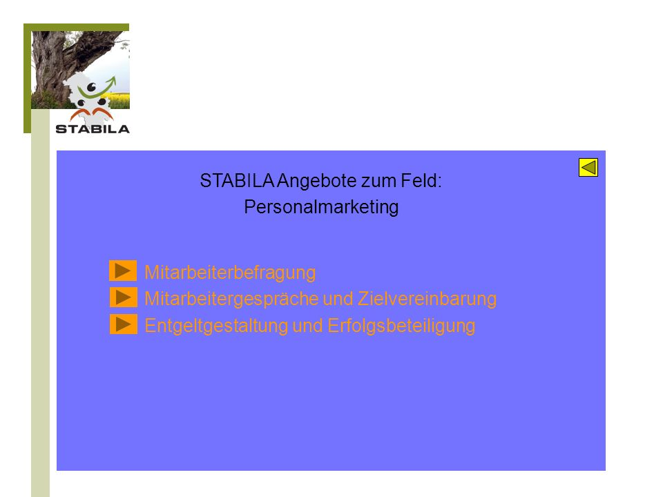 STABILA Angebote zum Feld: Personalmarketing