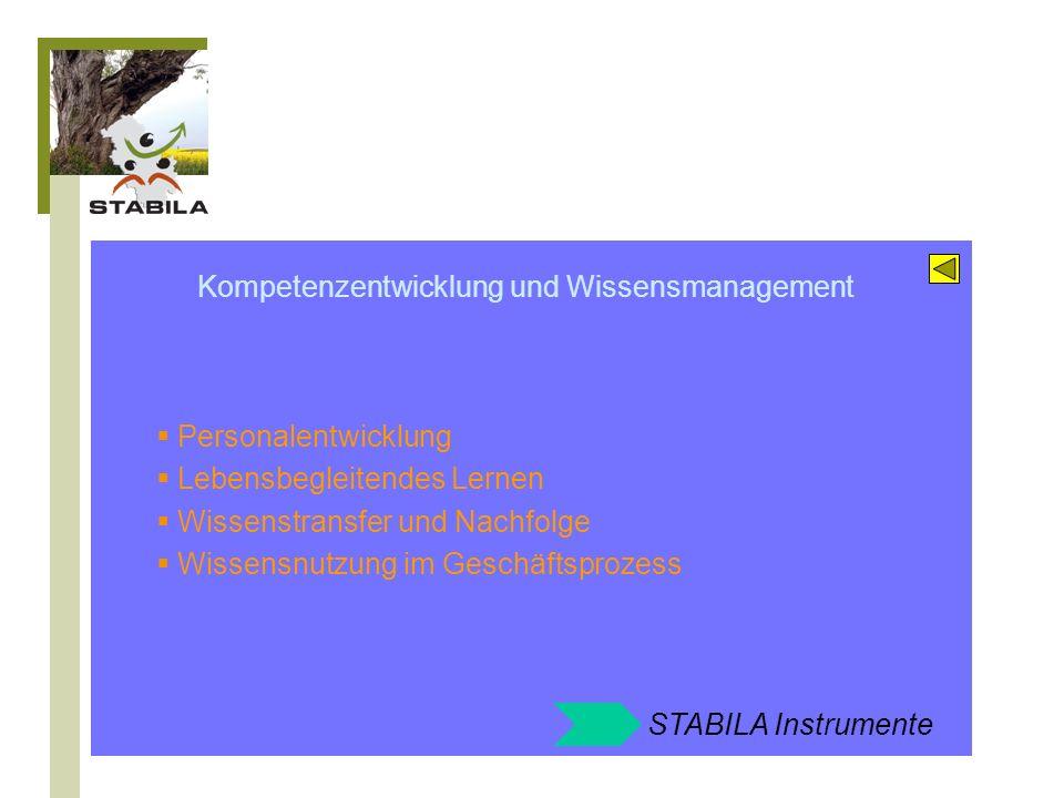 Kompetenzentwicklung und Wissensmanagement