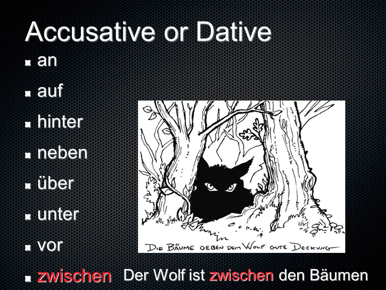 Der Wolf ist zwischen den Bäumen