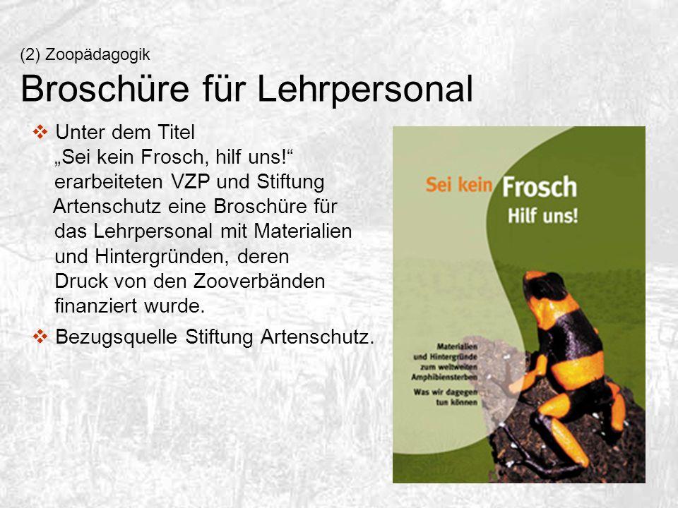 Broschüre für Lehrpersonal