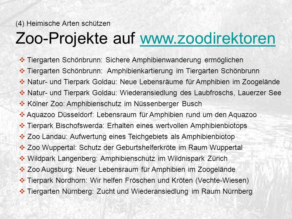 Zoo-Projekte auf www.zoodirektoren