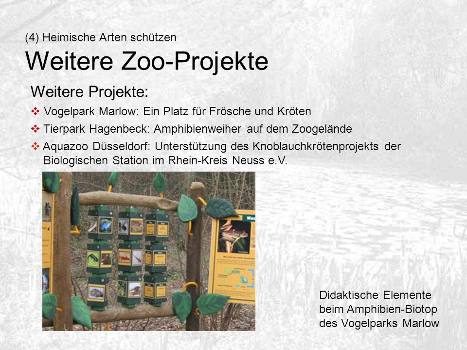 Weitere Zoo-Projekte Weitere Projekte: (4) Heimische Arten schützen