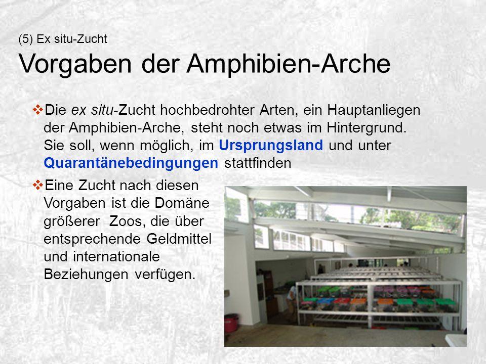 Vorgaben der Amphibien-Arche