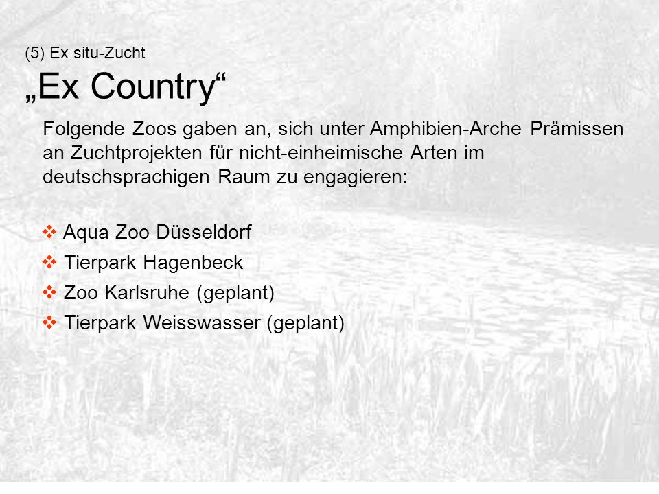 "(5) Ex situ-Zucht ""Ex Country"