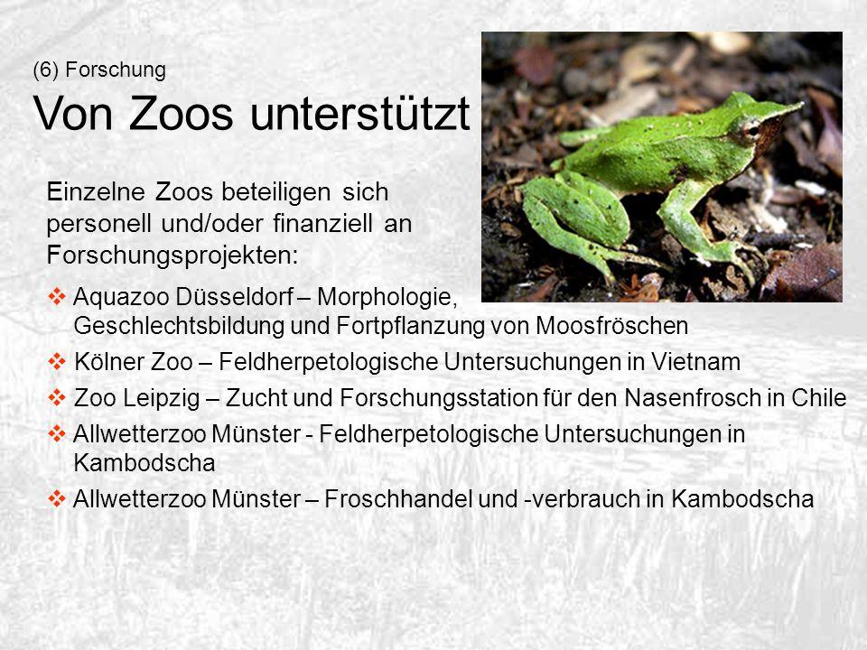 (6) Forschung Von Zoos unterstützt. Einzelne Zoos beteiligen sich personell und/oder finanziell an Forschungsprojekten: