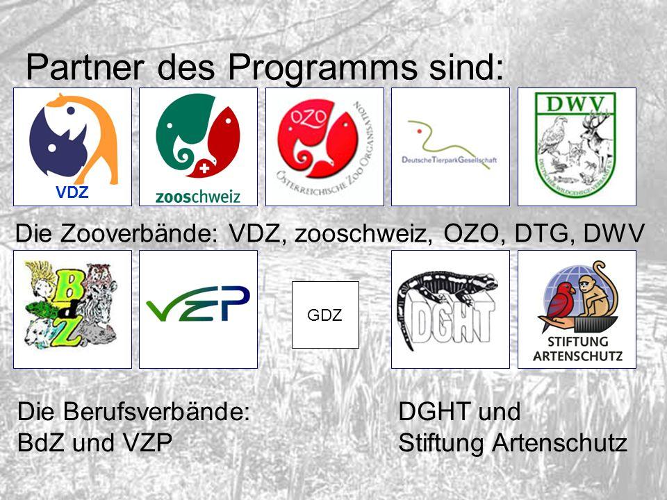 Partner des Programms sind: