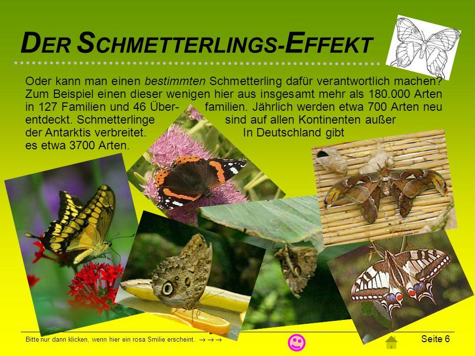 Oder kann man einen bestimmten Schmetterling dafür verantwortlich machen Zum Beispiel einen dieser wenigen hier aus insgesamt mehr als 180.000 Arten in 127 Familien und 46 Über- familien. Jährlich werden etwa 700 Arten neu entdeckt. Schmetterlinge sind auf allen Kontinenten außer