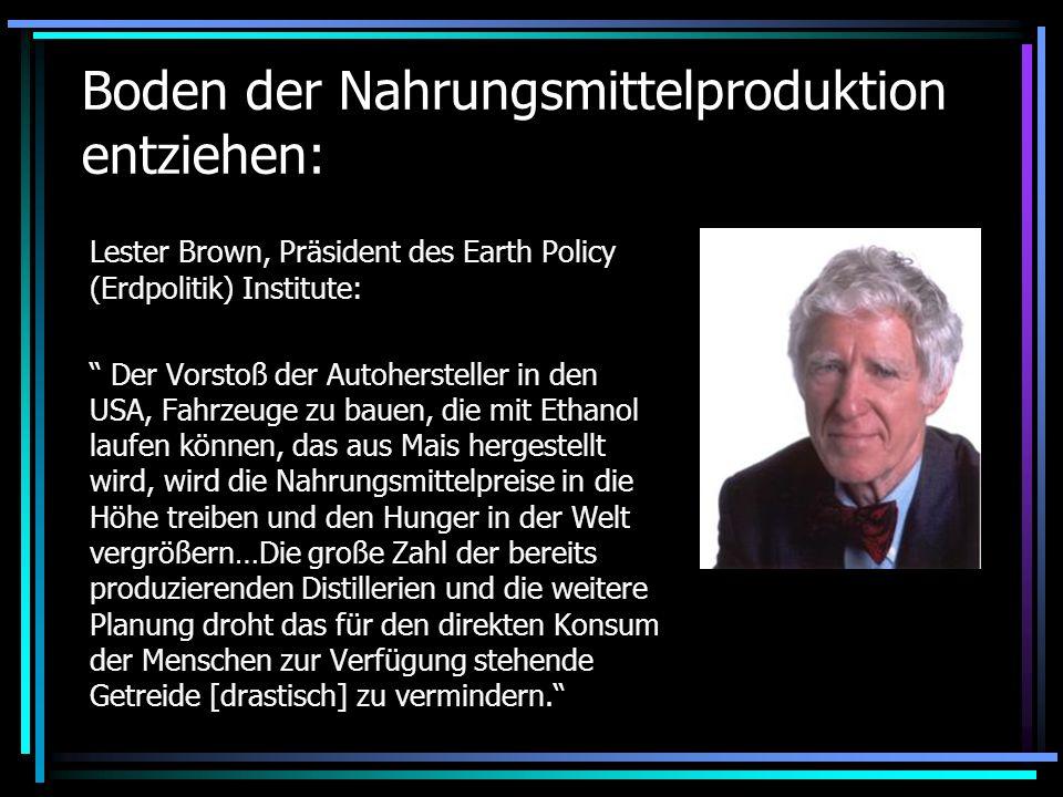 Boden der Nahrungsmittelproduktion entziehen: