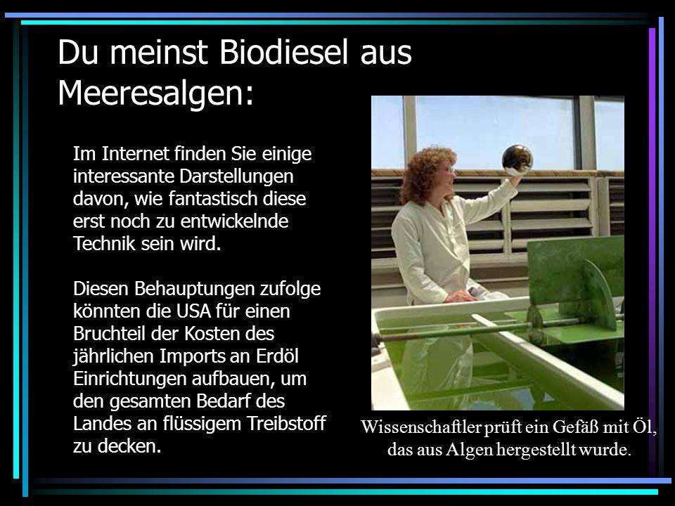 Du meinst Biodiesel aus Meeresalgen: