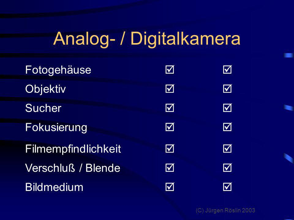 Analog- / Digitalkamera