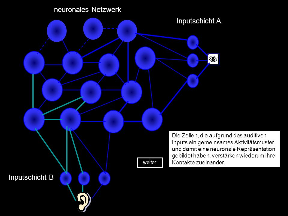 neuronales Netzwerk Inputschicht A Inputschicht B