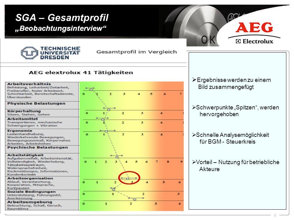 """SGA – Gesamtprofil """"Beobachtungsinterview"""